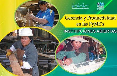 Diplomado: Gerencia y Productividad en las Pequeñas y Medianas Empresas 2da. versión
